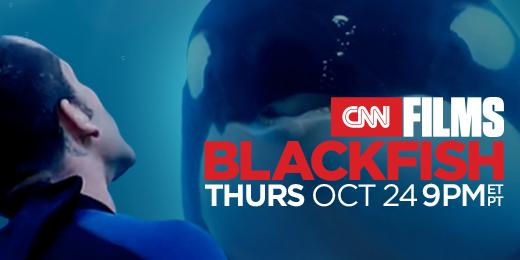 blackfish-cnn films