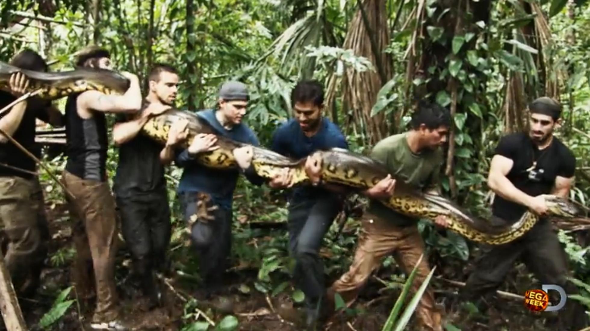 Шлюха и змея 5 фотография