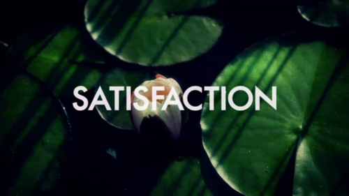 satisfaction-usa