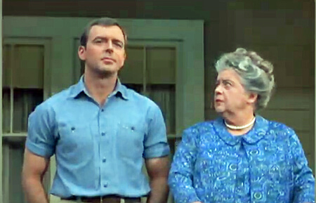 Ken Berry, Star of 'F Troop,' 'Mayberry R F D ' and 'Mama's Family